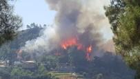 OYMAPıNAR - Manavgat'ta Orman Yangını (1)
