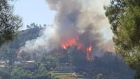 OYMAPıNAR - Manavgat'ta Orman Yangını