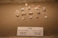 Dünyanın Tek Yeraltı Müzesi Kapadokya'da Bulunuyor