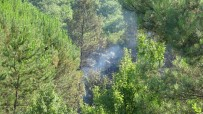 Şile'de Korkutan Orman Yangını