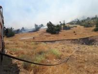 Hozat'taki Orman Yangını Söndürüldü