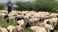 MEHMET TURAN - İDDEF'ten 'Bayrama Hazırız' Mesajı