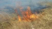 Burhaniye'de Yazlık Sitedeki Ot Yangını Korkuttu