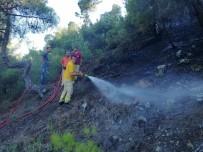 Çorum'da Orman Yangını; 2 Hektar Alan Kül Oldu