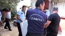 MIDYE DOLMA - Antalya'da Sağlıksız Koşullardaki Midyelere El Konuldu