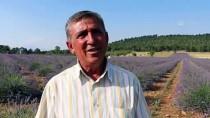 Lavanta Tarlasını Turizm Merkezine Çevirdi