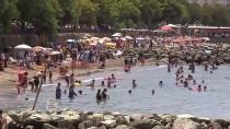 Yaz Mevsiminde Nüfusunun 25 Katına Hizmet Ediyor