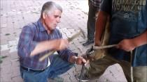 Afyonkarahisar'ın Yarım Asırlık Seyyar Nalbantı