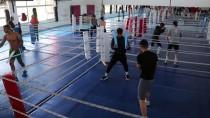 VOJVODİNA - Genç Milli Boksörlerin İkinci Etap Kampı Başladı
