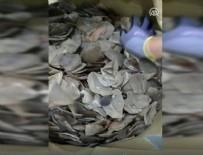 İstanbul Havalimanı'nda 1,2 ton pangolin pulu ele geçirildi