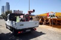 ECZACıBAŞı - Kartal Belediyesi, Kurban Bayramı Hazırlıklarını Tamamladı