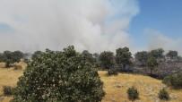 Mardin'deki Yangın 24 Saat Sonra Söndürüldü