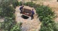 Çalılarla Çevrili Kaçak Kazıya Droneli Operasyon Açıklaması 4 Gözaltı