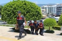 ÇEYREK ALTIN - Dolandırıcı 44 Bin 900 Dolar Ve 50 Bin Lira Değerindeki Ziynet Eşyasıyla Yakalandı