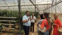 GÜSEM Organik Tarım Kursiyerlerinden İslahiye MYO'ya Ziyaret