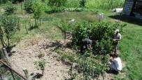 YERLİ TOHUM - 10 Yıllık Hayali Olan Organik Üretim İçin Mesleğini Bıraktı