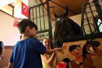 Atlı Eğitim Merkezi İle Hayvan Sevgisi Aşılanıyor