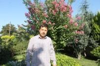 İmam Camiyi Botanik Bahçesine Çevirdi