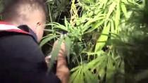 Uşak'ta Fotokapanlı Uyuşturucu Operasyonu