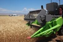 Elazığ'da Deneme Amaçlı Ekilen Arpa Ve Buğdayın Hasadı Yapıldı