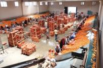 KAŞıNHANı - Havucun Merkezi Konya'da Hasat Yapılıyor