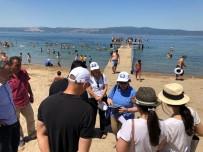 Kocaeli'nin Mavi Bayraklı Plajlarına Tam Not