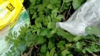 Mudurnu Çayı Kenarına Atılan Kimyasal Madde Çuvalları Tepkiye Neden Oldu