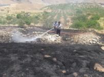 Siirt'te Fıstık Ağaçları Ve Üzüm Bağlarında Yangın Açıklaması 50 Dönümlük Alan Zarar Gördü