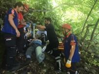 Uludağ'da Ihlamur Toplarken Ağaçtan Düştü, Yardımına Kurtarma Ekipleri Koştu