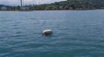 15 Saat Karadeniz'in Hırçın Sularında Kurtulmayı Beklediler