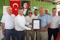 MUSTAFA YIĞIT - Manavgat'ın 3.  Hastalıktan Ari Sertifikası Verildi