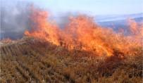 Validen Çiftçilere 'Anız Yangını' Uyarısı