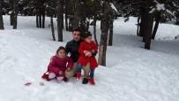 Eskişehir'de Trafik Kazası Açıklaması 3 Ölü, 3 Yaralı