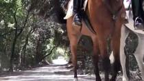 DİLEK YARIMADASI - Milli Parkın Güvenliği Atlı Timlere Emanet