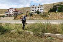 Bayburt'ta Parklarda Çim Biçme Ve İlaçlama Çalışması
