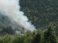 Afyonkarahisar'ın Çay İlçesindeki Orman Yangını Kontrol Altına Alındı