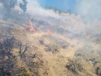Orman Yangını Söndürüldü