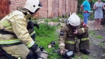SIBIRYA - Rus İtfaiyeciler Yangından Kurtardıkları Kediyi Hayata Döndürdü