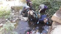 Artvinli Köylü Kadınlardan Örnek Alınacak Çöp Temizliği