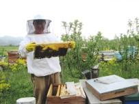 BAL ÜRETİMİ - Kütahya'da Geçen Yıl 236 Ton Bal Üretildi