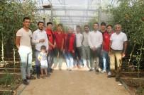 HAMZA DAĞ - Silopi'de Tarım İşçilerine İlk Yardım Eğitimi