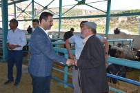 KURBANLIK HAYVAN - Başkan Geylani, Bayram Öncesi Mezbahana Ve Hayvan Pazarını Ziyaret Etti