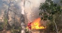 Bursa Ormanları'nda Kule Ve Gözetleme Tartışması