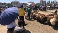 KURBANLIK HAYVAN - Hayvan Pazarında Bayram Yoğunluğu