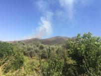 BADEMLI - Ödemiş'te Orman Yangını Açıklaması Yangın Kontrol Altına Alındı