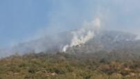 BADEMLI - Ödemiş'te Orman Yangını