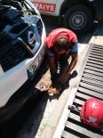 Otomobilin Motor Bölümüne Giren Kedi Yavrusunu İtfaiye Kurtardı