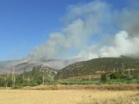 Afyonkarahisar'ın Başmakçı İlçesinde Çıkan Orman Yangını Sabaha Karşı Kontral Altına Alındı