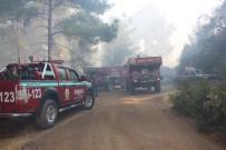 Antalya'da 3 Saat Süren Orman Yangını Kontrol Altına Alındı