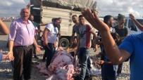 KURBANLIK HAYVAN - Göztepe'de Kaçak Kurban Kesimi Yapanlara Zabıta Müdahalesi
